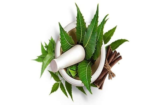 10 Ways You Can Use Neem For Overall Wellness