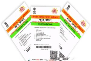 Here is how you can track Aadhaar history for the past 6 months