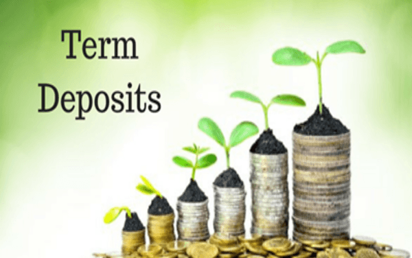 Best Term Deposit For You: SBI vs HDFC vs Bank Of India