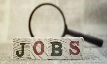 Delhi govt launches portal for job-seekers, employers