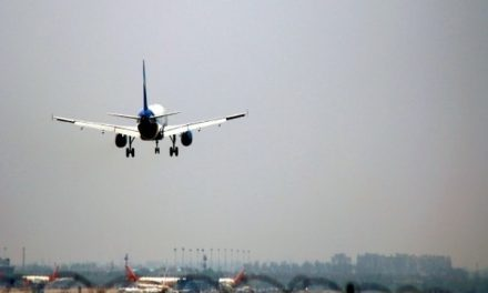 Cap on domestic flight rates to stay till May 31: DGCA