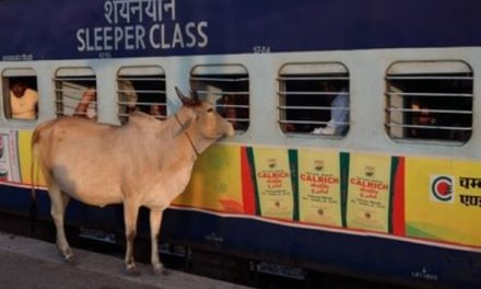 Indian Railways to run 71 unreserved passenger trains from April 5. See the list.