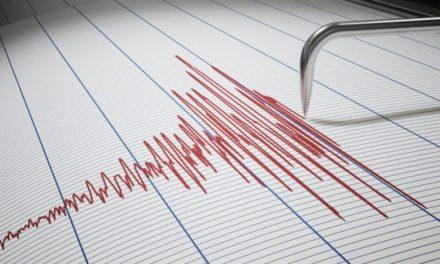 IIT Roorkee, NDMA develops an app that predicts natural disasters: Details inside.